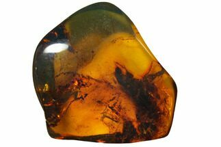 "Buy 1.7""  Polished Chiapas Amber (16 grams) - Mexico - #114760"