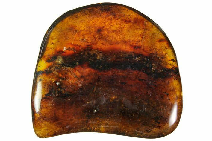 "1.7""  Polished Chiapas Amber (9 grams) - Mexico"