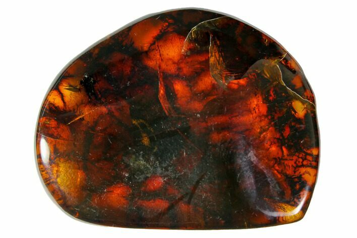 "1.6""  Polished Chiapas Amber (8 grams) - Mexico"