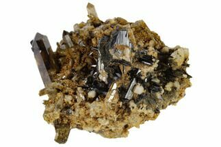 "2.4"" Smoky Quartz, Orthoclase and Aegirine Association - Malawi For Sale, #117503"