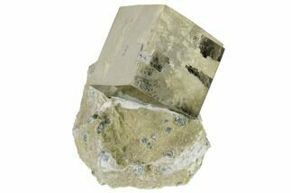 "Buy 1.01"" Pyrite Cube In Rock - Navajun, Spain - #118234"