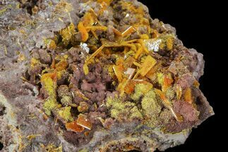 "2.25"" Orange Wulfenite Crystal Cluster - Rowley Mine, Arizona For Sale, #118958"