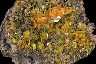 Wulfenite - Fossils For Sale - #118959