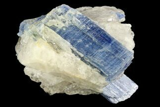 "2.1"" Vibrant Blue Kyanite Crystals In Quartz - Brazil For Sale, #118841"