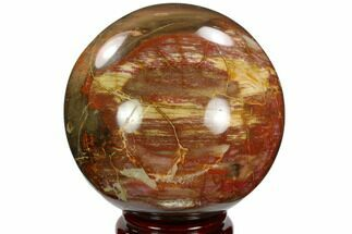 "5.45"" Colorful Petrified Wood Sphere - Madagascar For Sale, #120749"