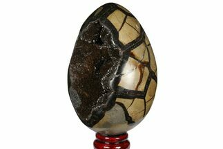 "5.5"" Septarian ""Dragon Egg"" Geode - Black Crystals For Sale, #120881"