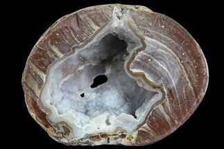 "3.65"" Crystal Filled Dugway Geode (Polished Half) For Sale, #121667"