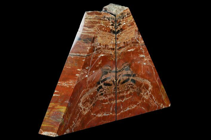 "9.2"" Arizona Petrified Wood Bookends - Red And Brown"