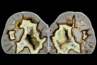 "4.7"" Wide, Crystal Filled Septarian Geode Bookends - Utah For Sale, #123833"