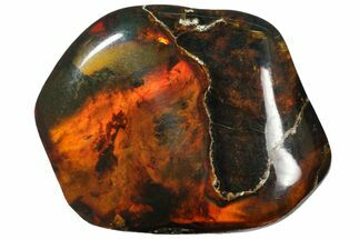 "1.5""  Polished Chiapas Amber (10 grams) - Mexico For Sale, #114899"