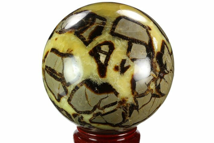 "5.7"" Polished, Septarian Sphere - Madagascar"