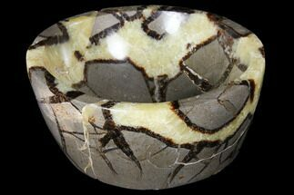 Septarian - Fossils For Sale - #126462