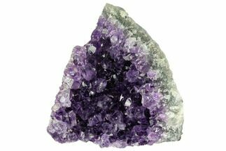 "3.5"" Dark Purple, Amethyst Crystal Cluster - Uruguay For Sale, #123788"
