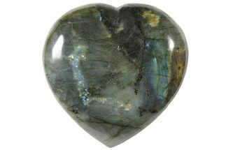 Labradorite - Fossils For Sale - #126666
