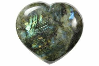 Labradorite - Fossils For Sale - #126696