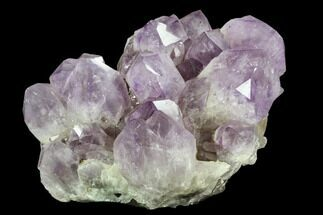 Quartz var. Amethyst - Fossils For Sale - #127155