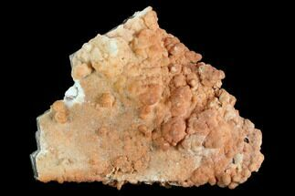 Aragonite & Calcite - Fossils For Sale - #127083