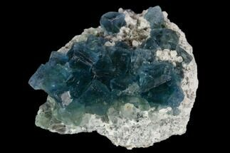 "Buy 2.1"" Cubic, Blue-Green Fluorite Crystals on Quartz - China - #128554"