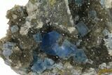 "2.4"" Blue Cubic Fluorite on Quartz - China - #128573-3"