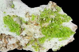 "3.2"" Vibrant Green Pyromorphite Crystal Cluster - China For Sale, #128579"