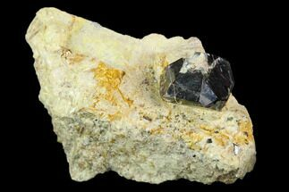 Buy Rutile Crystals in Pyrophyllite - Champion Mine, California - #127012