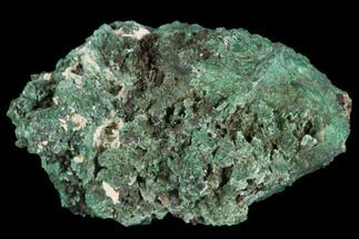 "1.4"" Fibrous Malachite with Azurite - Mexico For Sale, #126962"
