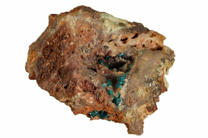 "1.45"" Dioptase Crystals on Rock - Namibia"