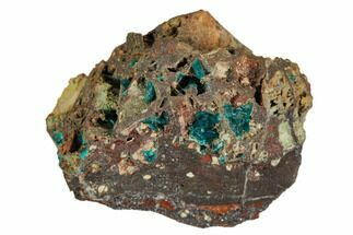 "1.5"" Dioptase Crystals on Rock - Namibia For Sale, #126935"