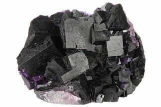 "Buy 3.1"" Dark Purple Cubic Fluorite Crystal Cluster - China - #128863"
