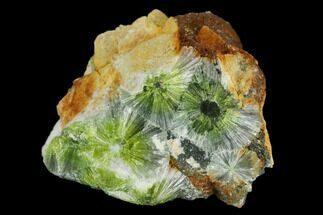 Wavellite - Fossils For Sale - #127110