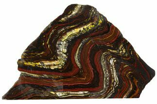 "Buy 5.5"" Polished Tiger Iron Stromatolite - 3.02 Billion Years - #129208"