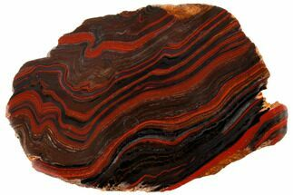 "Buy 9.9"" Polished Tiger Iron Stromatolite - 3.02 Billion Years - #129451"