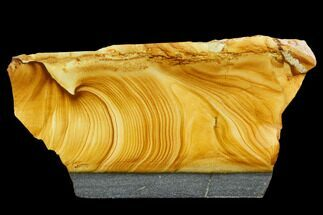"5.4"" Polished Golden Picture Jasper Slab - Nevada For Sale, #129713"