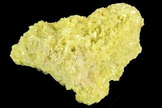 "Buy 2.5"" Sulfur Crystal Cluster on Matrix - Nevada - #129736"