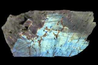 "10.1"" Flashy, Polished Labradorite Slab - Madagascar For Sale, #129887"