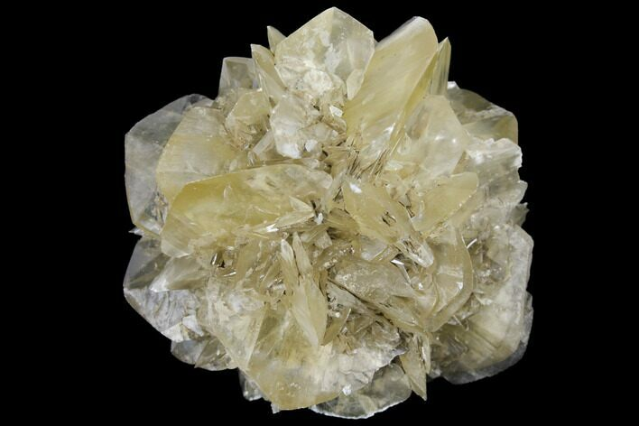 "2.5"" Twinned Selenite Crystals (Fluorescent) - Red River Floodway"