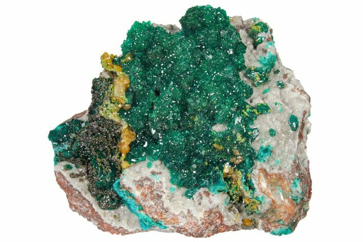 "2.6"" Gemmy Dioptase and Mimetite on Dolomite - Ntola Mine, Congo"