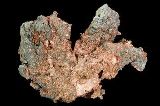 Copper - Fossils For Sale - #130461