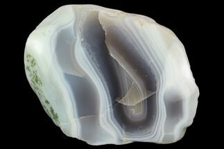 Chalcedony var. Agate  - Fossils For Sale - #131001