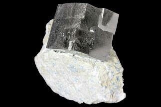 "Buy .98"" Shiny, Natural Pyrite Cube In Rock - Navajun, Spain - #131113"