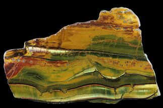 "Buy 11"" Marra Mamba Tigers Eye - Mt. Brockman (2.7 Billion Years) - #131170"