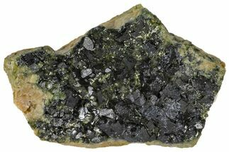 Andradite var. Demantoid - Fossils For Sale - #131541