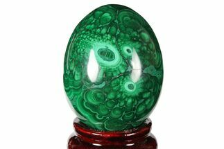 "2.25"" Flowery, Polished Malachite Egg - Congo For Sale, #131861"