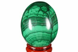"1.95"" Flowery, Polished Malachite Egg - Congo For Sale, #131876"