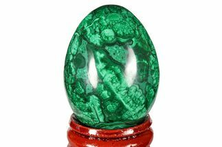 "1.75"" Flowery, Polished Malachite Egg - Congo For Sale, #131891"