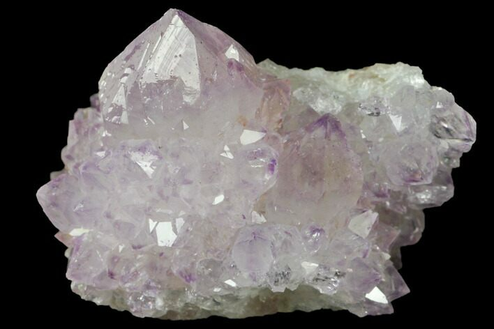 "1.4"" Cactus Quartz (Amethyst) Crystal Cluster - South Africa"