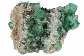 Fluorite  - Fossils For Sale - #132972