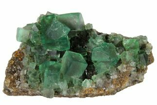 Fluorite  - Fossils For Sale - #132975