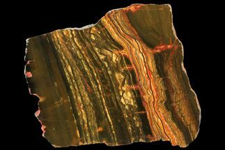 "Buy 8"" Marra Mamba Tiger's Eye Slab - Mt. Brockman (2.7 Billion Years) - #133087"