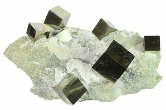 "6.7"" Cluster Of Shiny, Natural Pyrite Cubes - Navajun, Spain For Sale, #132560"